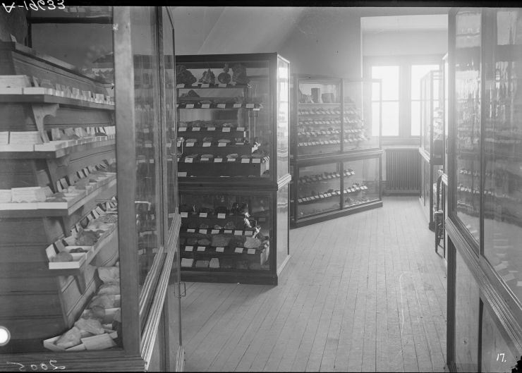 An image of specimen cabinets in the natural history museum, Old Main, early in the 20th century.
